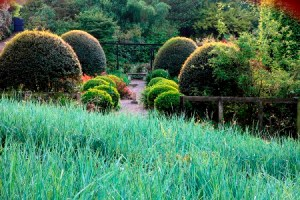 Veddw House Garden, The Fedw, Devauden, Monmouthshire, South Wales, Most original garden in Britain, Anne Wareham, The Bad Tempered Gardener and Charles Hawes, photographer