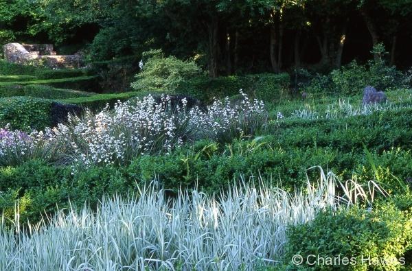 Veddw - South Garden - Grasses Parterre