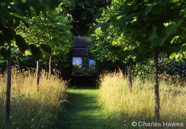 North Garden - Elizabeths Walk - Meadow - Orchard 1