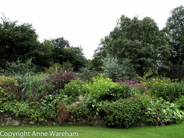 Crescent Border, Veddw late summer copyright Anne Wareham