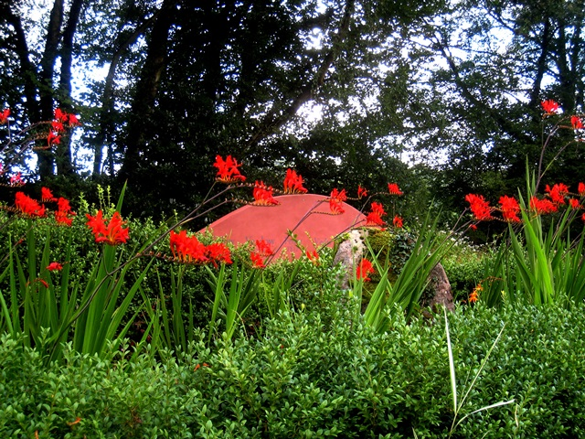 Crocosmia Lucifer by seat, Veddw copyright Anne Wareham.2. s