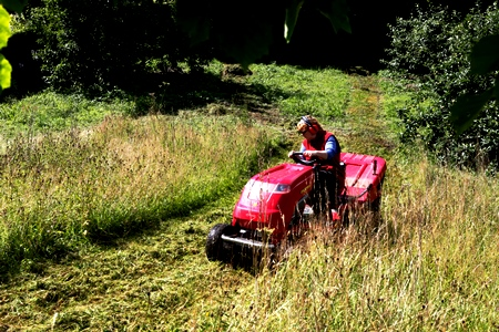Anne cutting meadow Veddw South Wales Garden Attraction, copyright Charles Hawes