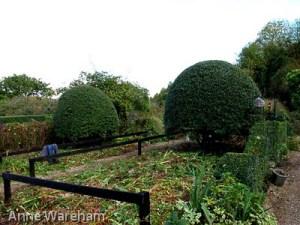Front-Garden-cutting-down-3-Veddw-Copyright-Anne-Wareham