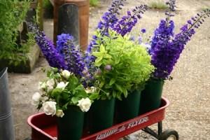 a trolley full of buckets of flowers - copyright Veddw