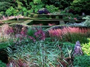 veddw-143-view-across-grasses-s copyright Anne wareham