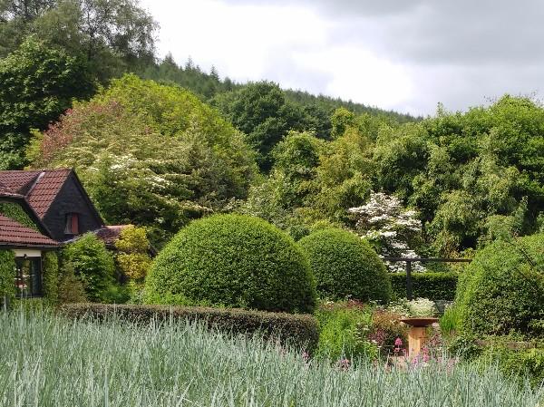 Veddw front garden, copyright Anne Wareham