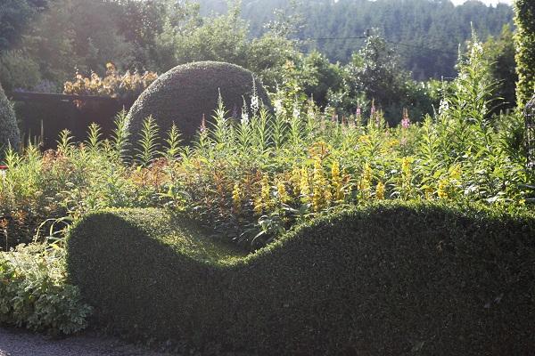 Front Garden, Veddw Copyright Anne Wareham