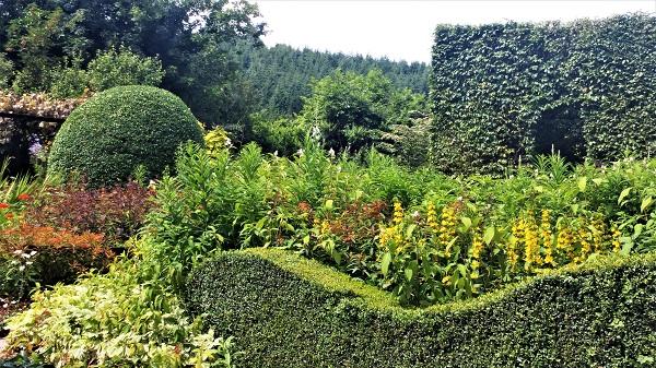 July 2016 Veddw front garden copyright Anne Wareham front garden copyright Anne Wareham