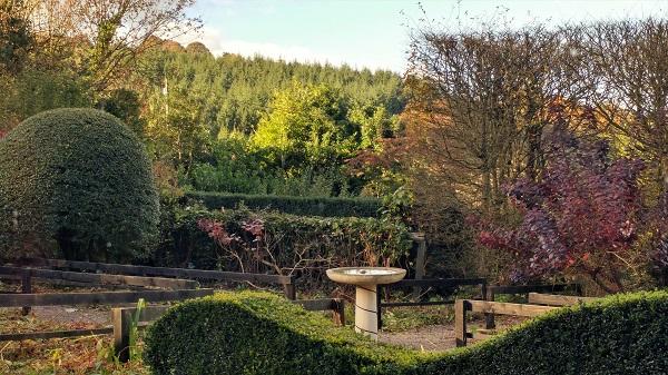 Veddw front garden copyright Anne Wareham