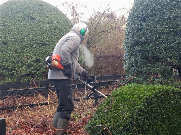 Catching up – or chopping down.