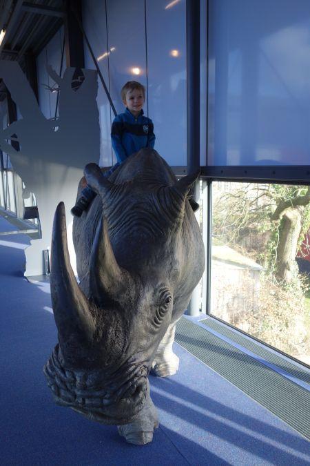 Herinneringen aan safari / Memories of safari