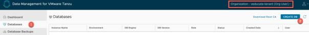 Data Management for Tanzu - Org User - Create Database