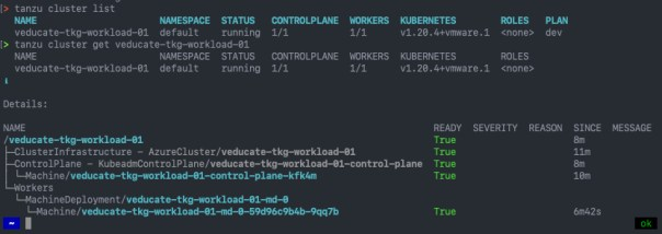 Deploy Tanzu Kubernetes Guest cluster to Azure - tanzu cluster list - tanzu cluster get