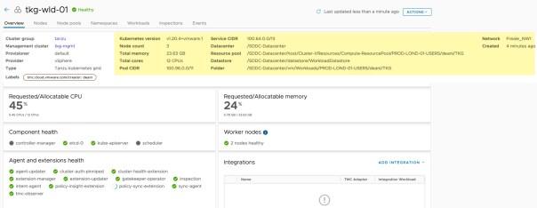 Tanzu Mission Control - Register existing workload cluster - Cluster Overview