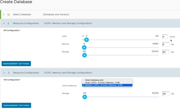 Data Management for Tanzu - Org User - Create Database - Resource Configuration