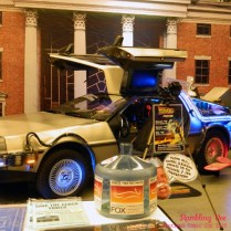 Marty McFly's ride.