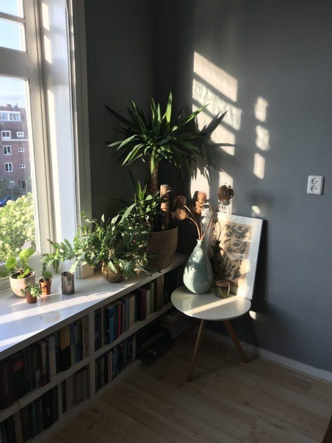 fijn plekje in huis