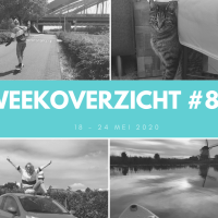 Weekoverzicht #83: Pinterest coaching en suppen bij Kinderdijk