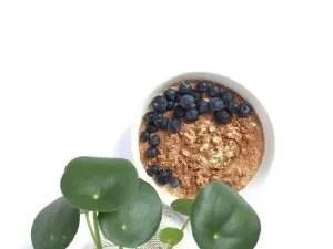 Berry Oats, colazione di avena con latte di mandorla fatto in casa e mirtill