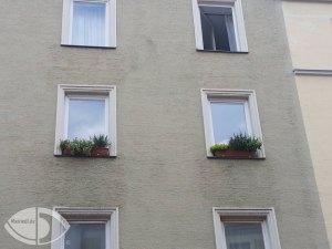 Blumenkasten auf dem Fensterbrett