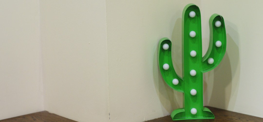 A cactus decoration at Taco Mazama, Edinburgh