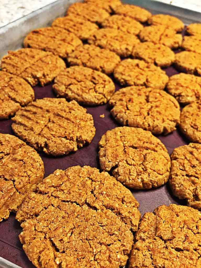 Image of vegan peanut butter cookies on a cookie sheet