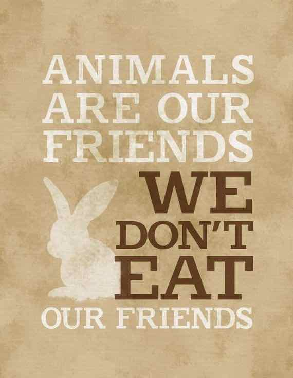 """Image of bunny with vegan quote: """"Animals are our friends, we don't eat our friends."""""""