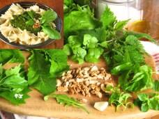 Kräuter-Pesto mit Walnüssen