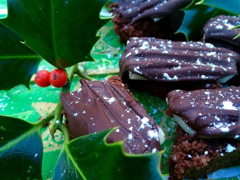 gluten free mini chocolate logs