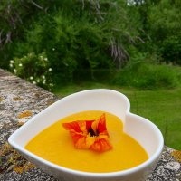 carroty soup, nasturtium optional