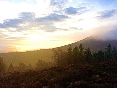 Bennachie in the mist