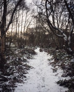 a snowy path, time for more Choc Hotlate?