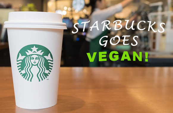 Vegan Coffee