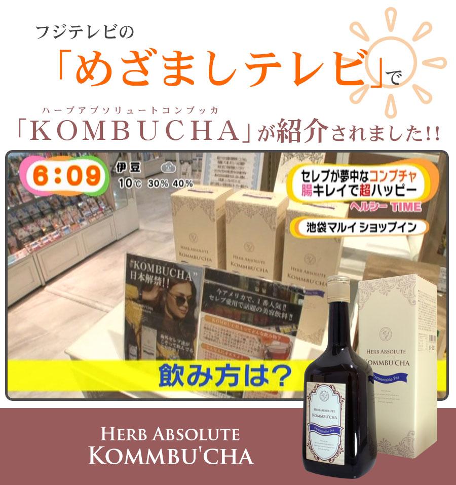 kombucha(コンブチャ)