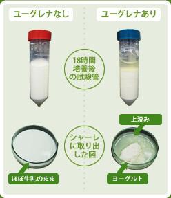 出典:http://www.euglena.jp/