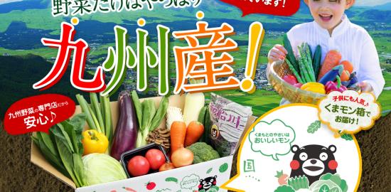 安心・安全の九州野菜の宅配・通販は九州野菜王国