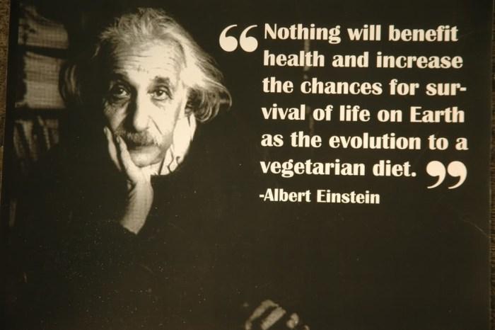 albert einstein vegetarian