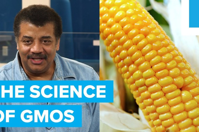 the science of gmos