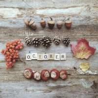 Welkom herfst