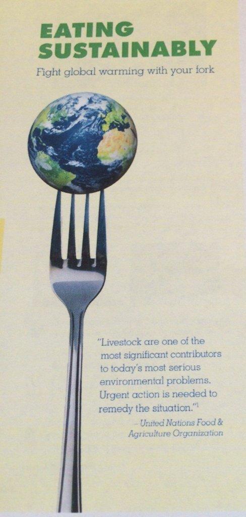 eating-sustainably-1