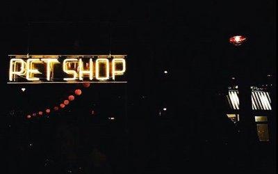 The Pet Shop – A Local Hip Veg Bar/Eatery in Jersey City, New Jersey