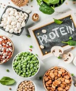 Adelgazar vegano Protein-B12