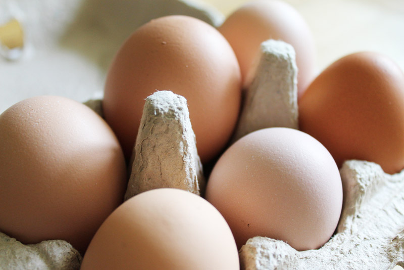 Hoe vervang je eieren? 20 manieren