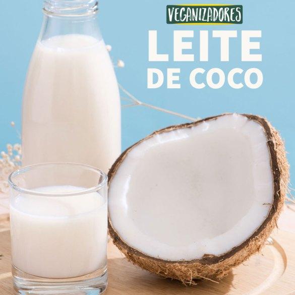 Leite de Coco Caseiro - Receita Vegana - Veganizadores