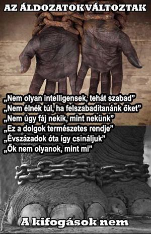 allat rabszolgasag
