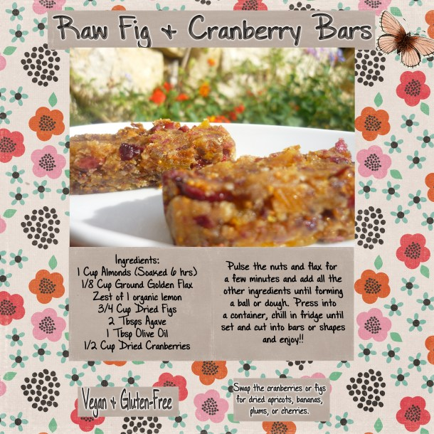Raw Fig & Cranberry Bars
