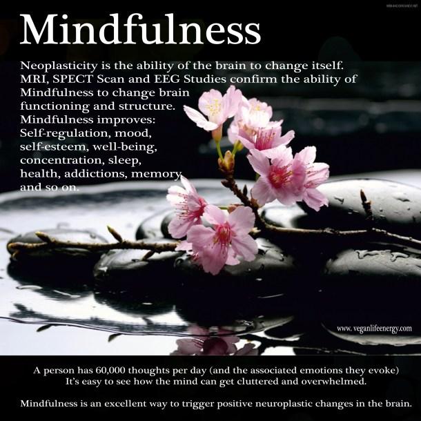 mindfulnessfb_edited-1