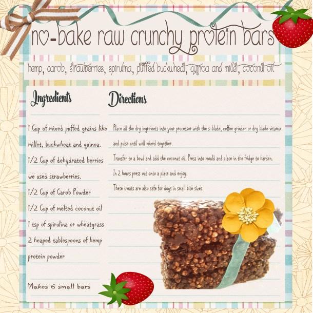 no bake raw crunchy protein bars