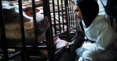 Vegan actress Rooney Mara investigating with Animal Equality