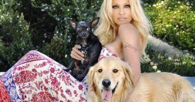 Pamela Anderson want to save dogs from TAMU for Christmas